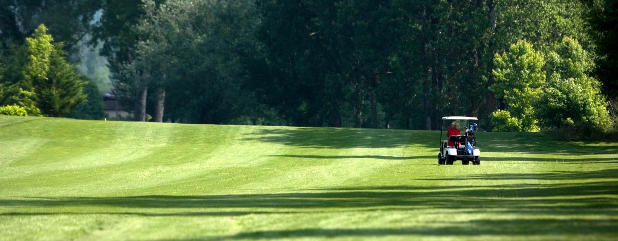 golf de la varietăți varicoase